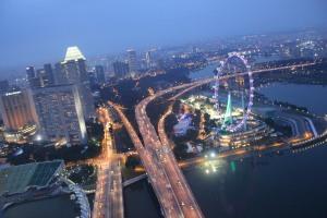 Singapore flyer dari atas